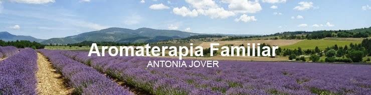 Antonia Jovercropped-rte_lavande_2013