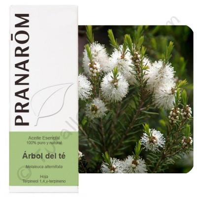 Aceite Esencial de árbol del té 10 ml. y 30 ml.  (pranarôm)