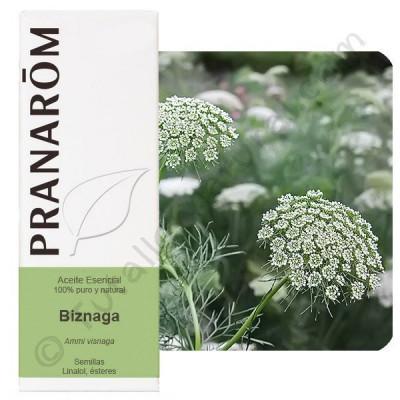 Aceite esencial de Biznaga Pranarom
