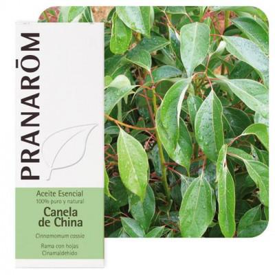 Aceite esencial de canela de China 10y 30 ml.