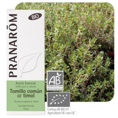 Aceite esencial de tomillo timol BIO 5 ml.