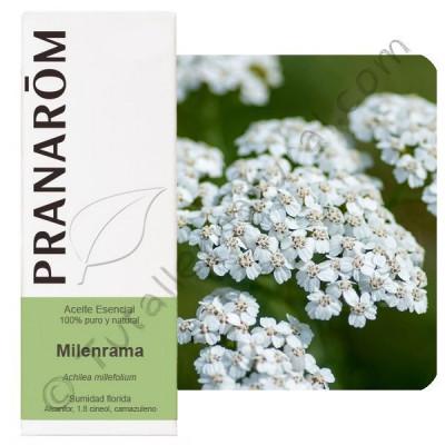Aceite Esencial de Milenrama 5 ml. - Pranarom