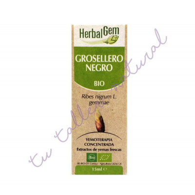 Macerado de grosellero negro o casis BIO 15 ml. - HerbalGem