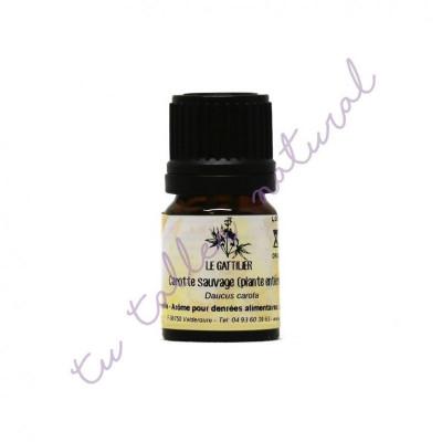 Aceite esencial de zanahoria silvestre (planta entera) BIO 2 ml. - Le Gattilier