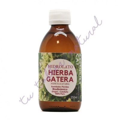 Hidrolato de hierba o menta gatera 250 ml. - Essenciescat